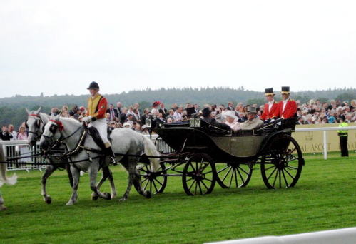 Private Carraiges of the English Regency (6/6)